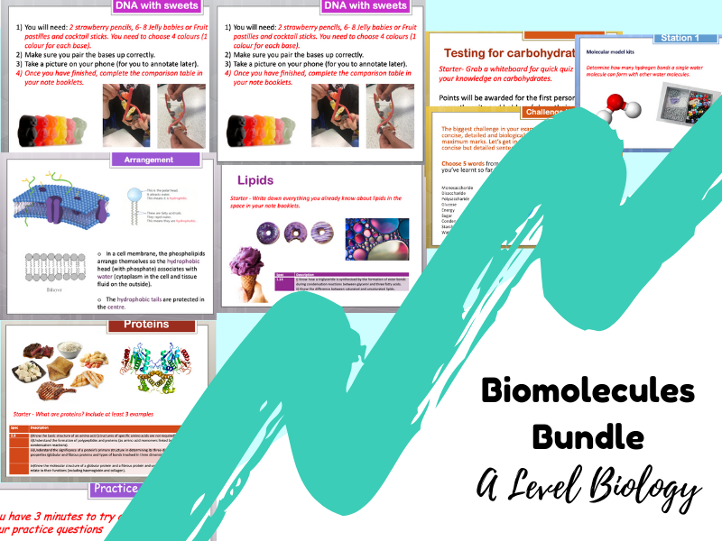 Biomolecules - A level Biology (23 Lessons and resources)