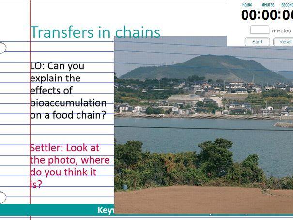 Transfers in chains  - bioaccumulation