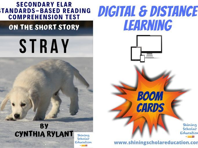 """Stray"" by Cynthia Rylant *ONLINE* (BOOM CARDS) Reading Comprehension Test"