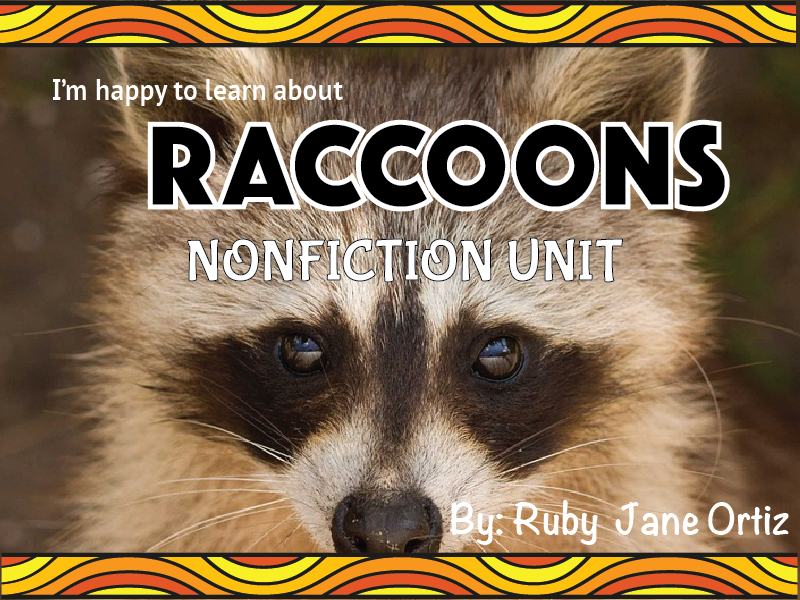 Raccoon Nonfiction Unit