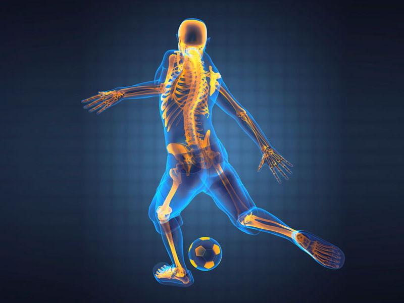 IB Sports Science Topic 1