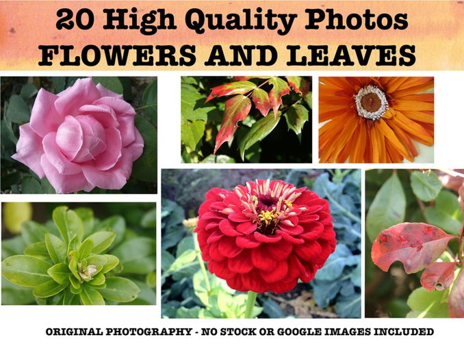 Flowers and Leaves - Photo resource pack