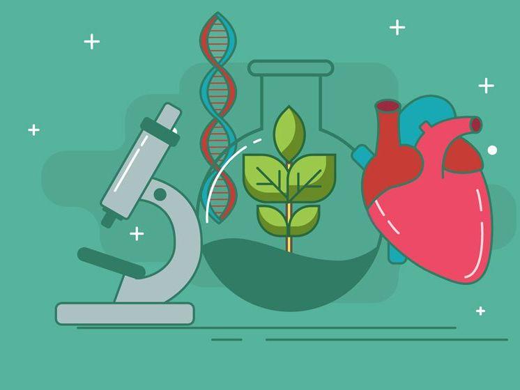 A-Level OCR Biology Topic Checklist