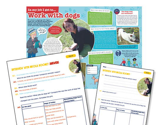 Year 6 Interview with a dog trainer guided reading