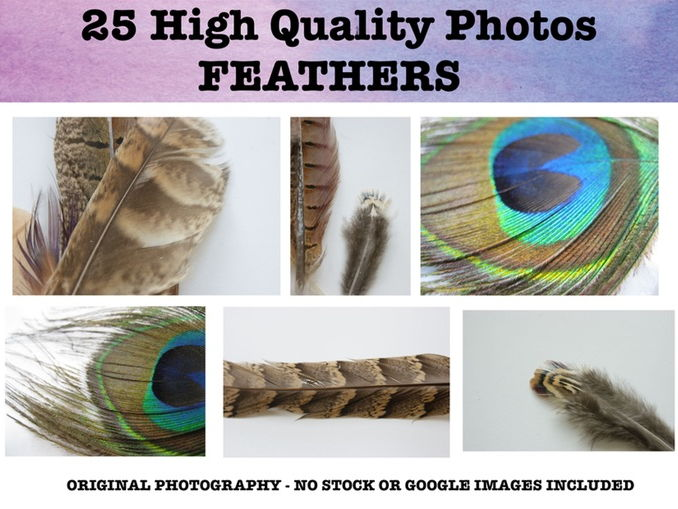 Feathers - Photo resource pack