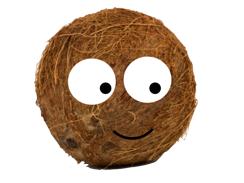 The Shy Coconut - Alternative Ending Activity