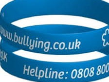 Bullying anti-bullying full lesson video activities, quizzes!