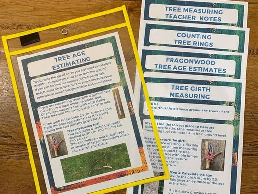 Fragonwood Maths Outdoor  Tree Age Estimation KS2