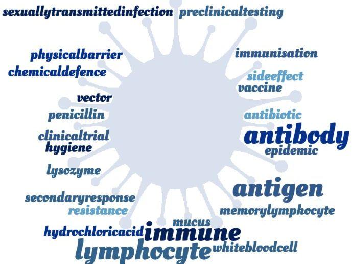 Immune System Crossword - EDEXCEL GCSE (9-1) Combined Science Paper 1