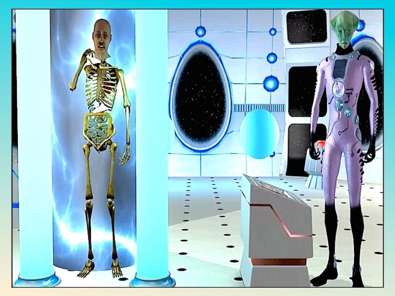 Human Anatomy - Video Story