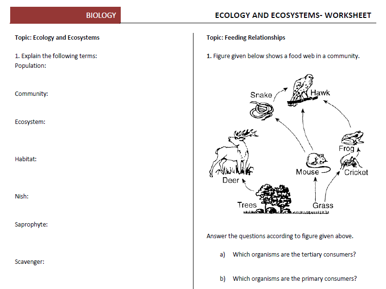 Ecology and Ecosystems Worksheets