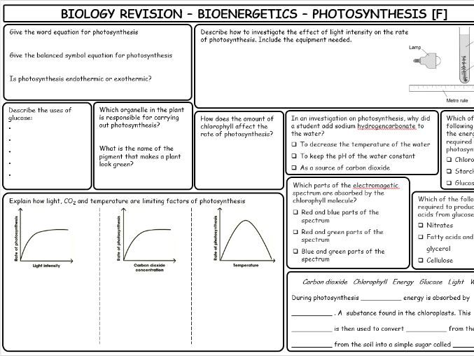 AQA GCSE Science Trilogy Biology Bioenergetics foundation revision sheets WITH ANSWERS