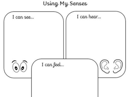 Using my senses: writing activity