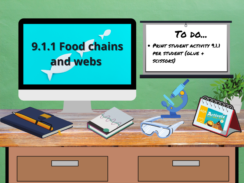 9.1.1 Food chains and webs (AQA KS3 Activate 1)