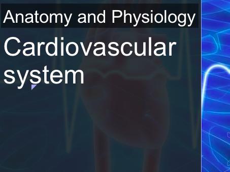 AQA A Level PE Anatomy and Physiology (Cardiovascular System) Powerpoint