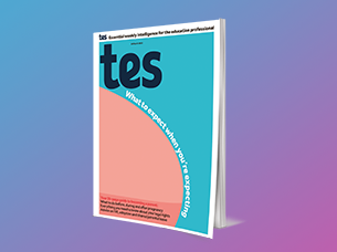 Tes Guide to Becoming a Parent (including Tes Early Years supplement)