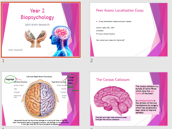 A Level AQA Psychology - Year 2 BioPsychology - Split Brain & Lateralisation