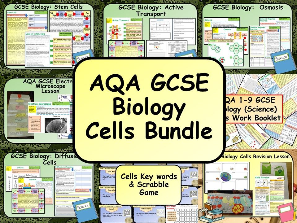 AQA KS4 GCSE Biology (Science) Cells Bundle