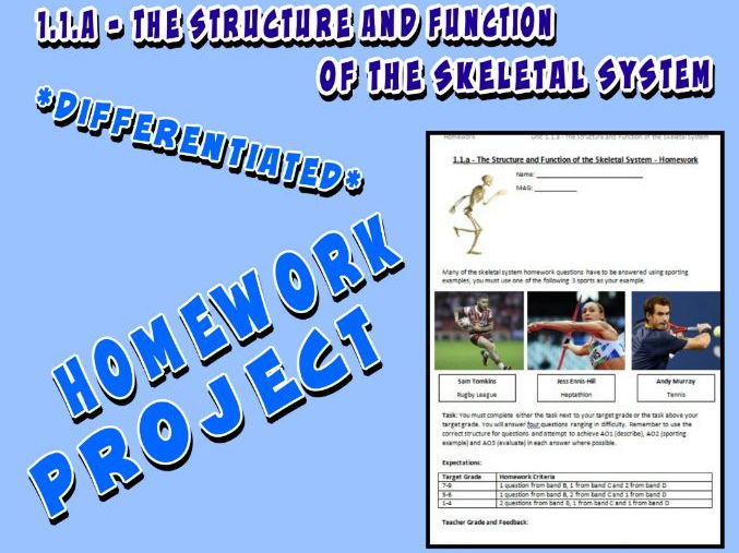 OCR GCSE PE 9-1 (2016) 1.1.a - Homework Project - The Structure and Function of the Skeletal System