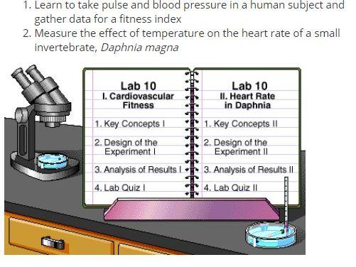 Intro to Circulatory System Lab Simulation