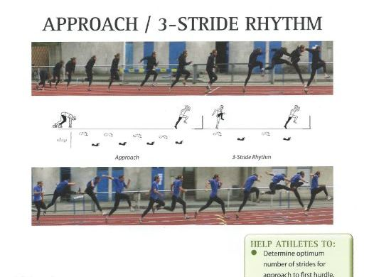 The hurdles - Teaching athletics resource includes everything to teach the hurdles.