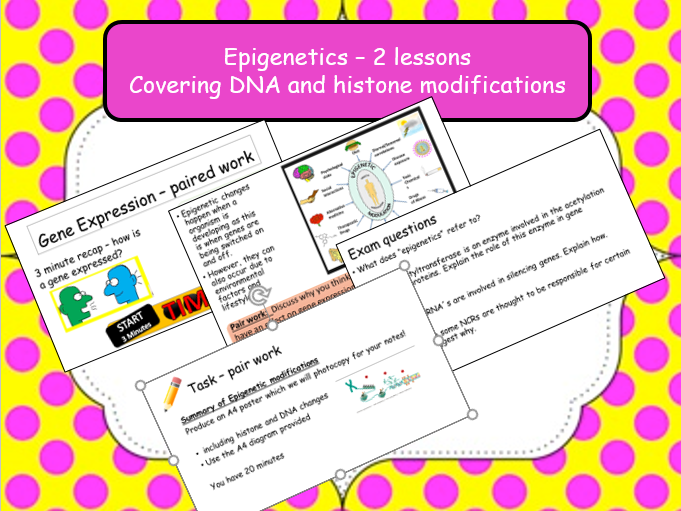 EPIGENETICS - 2 lessons covering DNA and histone modifications