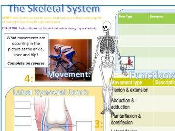 Btec Sport 2016 NEW SPEC UNIT 1- Learning Mat - A: Skeletal System