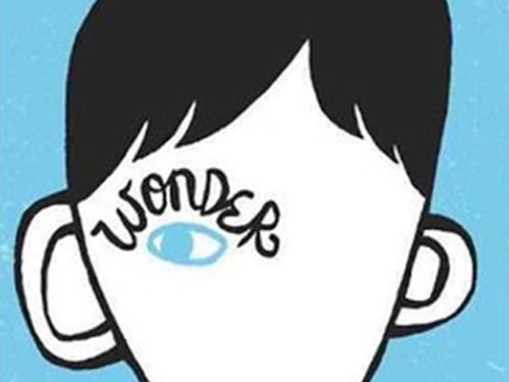 'Wonder' - R J Palacio - Full Scheme of Work for Years 6 or 7
