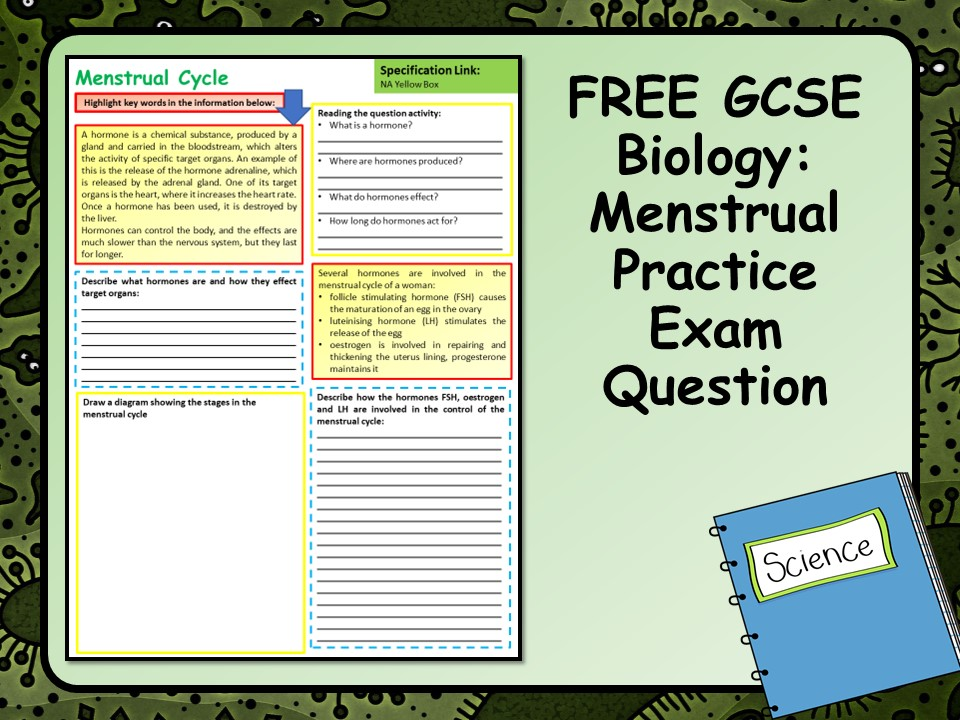 FREE GCSE Biology (Science) Menstrual Cycle  Practice Exam Question