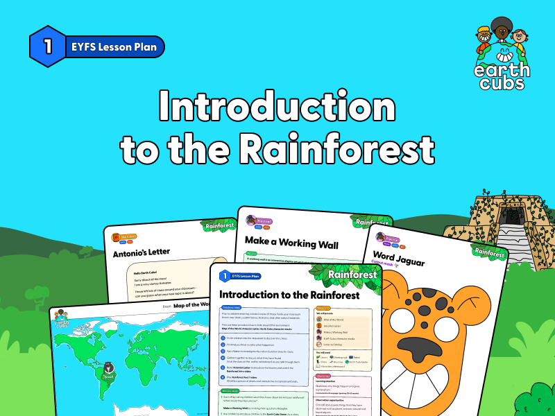 Introduction to the Rainforest: EYFS Lesson Plan