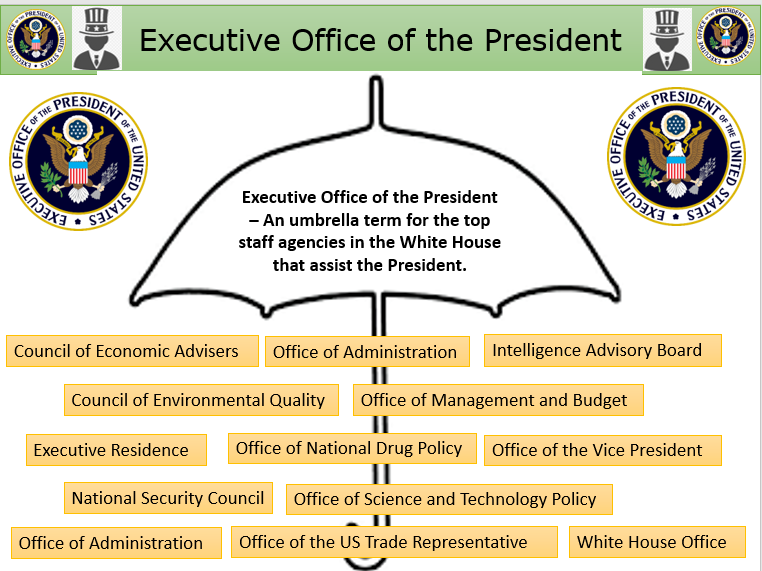 Executive Office of the President - Also focus on EXOP V Cabinet - US Government and Politics