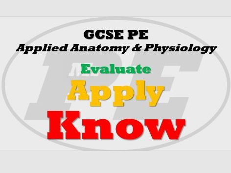 EXAM Q PYRAMIDS Anatomy & Physiology