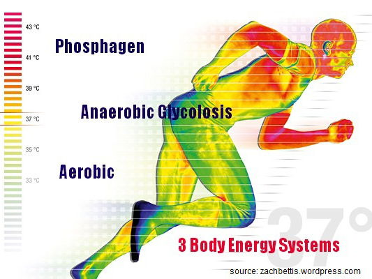 Energy systems Unit 1