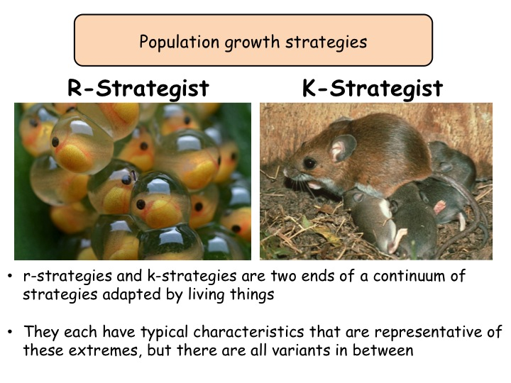Populations & sustainability: What determines population size? A-level biology