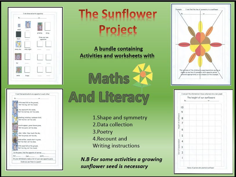 Maths and literacy in the Sunflower Project