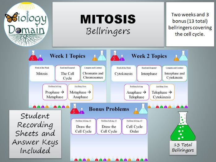 Two weeks of Mitosis Bellringers Warm Ups with Answer Key