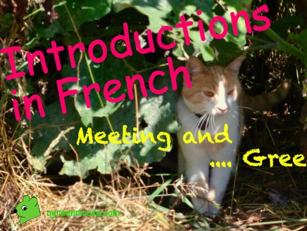 Introductions in French - Meeting and Greeting