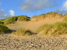 introduction to sand dunes