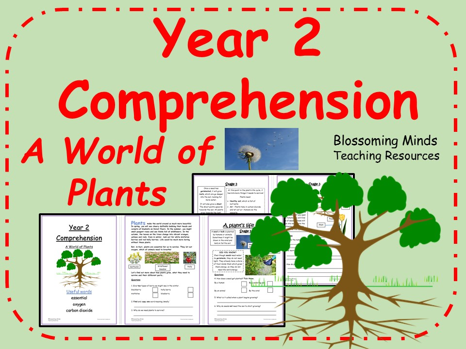 year 2 reading comprehension paper plants science by blossomingminds teaching resources. Black Bedroom Furniture Sets. Home Design Ideas