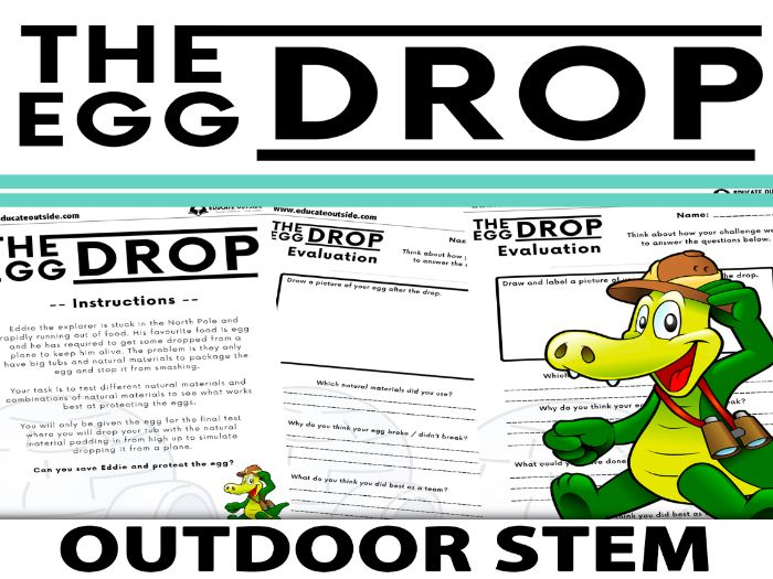 The Egg Drop - STEM Activity