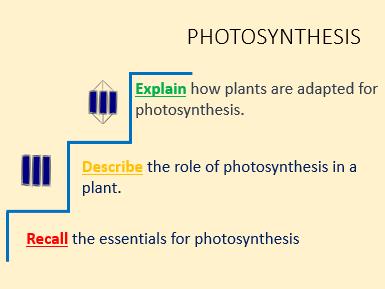 Photosynthesis GCSE lesson