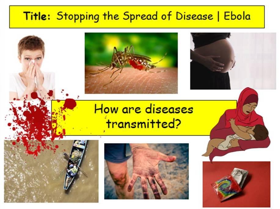 Disease Transmission | Ebola