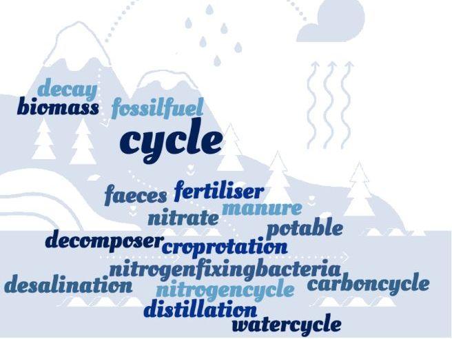 The Water, Carbon & Nitrogen Cycles Crossword - EDEXCEL GCSE (9-1) Combined Science Paper 2