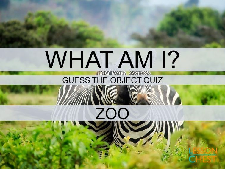 Fun Quiz - Guess the Object