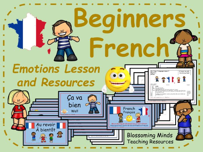 French lesson and resources - Emotions and Feelings