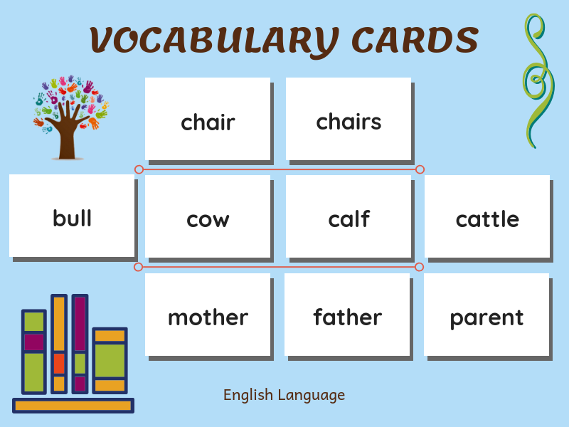 Montessori Vocabulary Cards & Charts