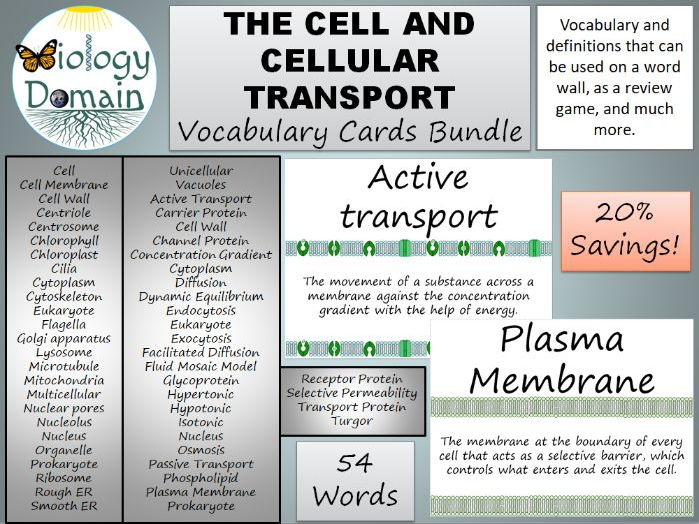 The Cell and Cellular Transport Vocabulary Cards Word Wall Bundle