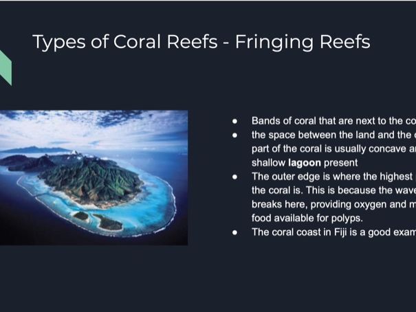 Coral Reefs & Mangroves Geography A-level Powerpoint