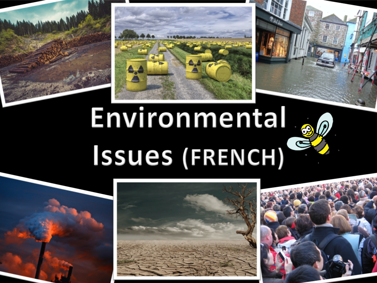 French environmental issues - activity pack - spinners, sentence builders, vocab cards and sheets