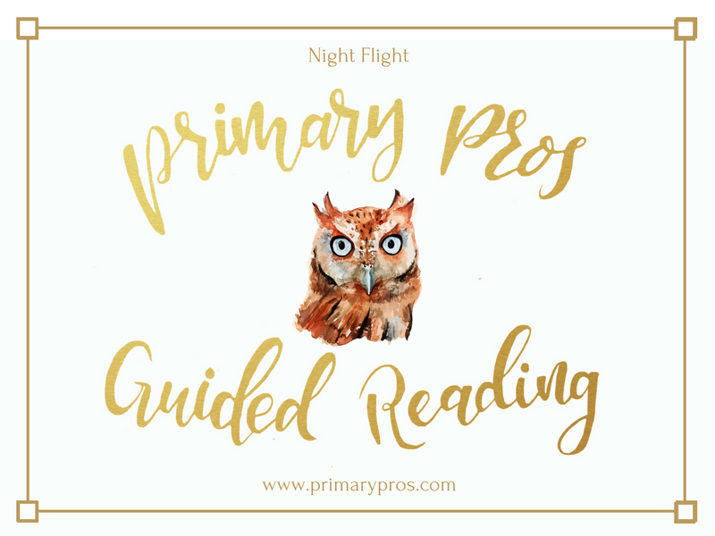 Year 3 & 4 Guided Reading Text - Night Flight